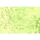 W309M (0,87m²) Groen