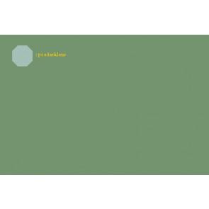 Verf 2804F groen (100gr)
